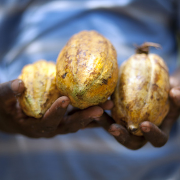 Povědomí o Fairtrade