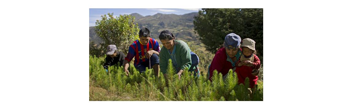 Osm příkladů jak fairtradoví pěstitelé chrání životní prostředí